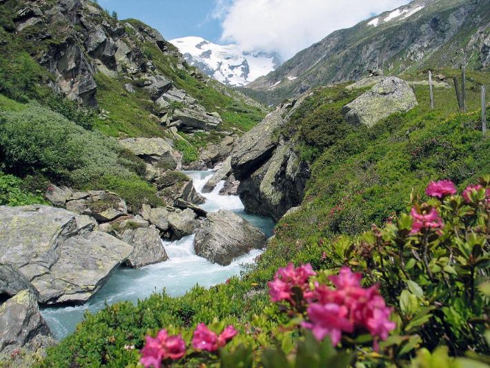 Gebirgsbach im Nationalpark Hohe Tauern (Osttirol)