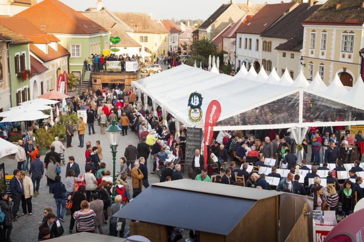 1. Gans Burgenland Genuss Festival Rust