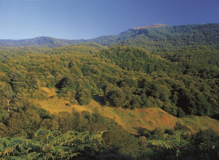 Asturien (6).jpg