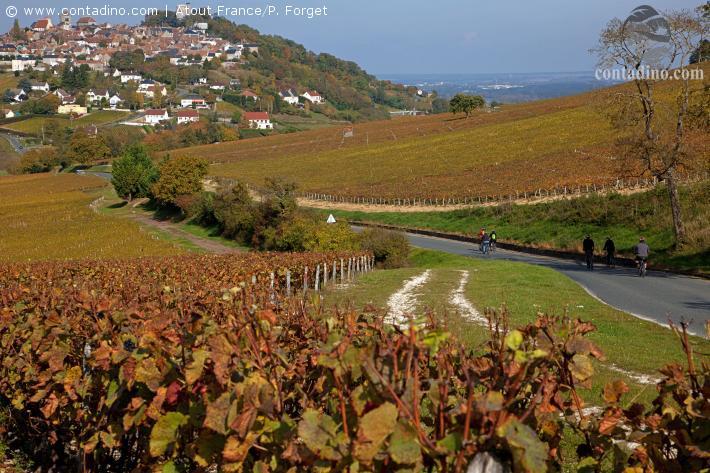Les vignes et villages de         Sancerre            P. Forget CRT Centre-Val de Loire.jpg