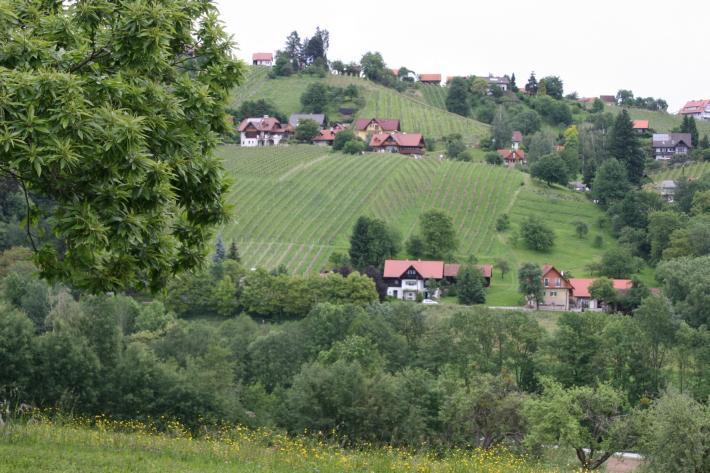 Steiermark_Einleitung.jpg