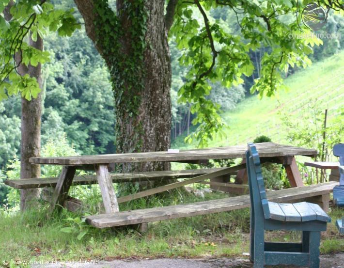 Steiermark_Landschaft2.jpg