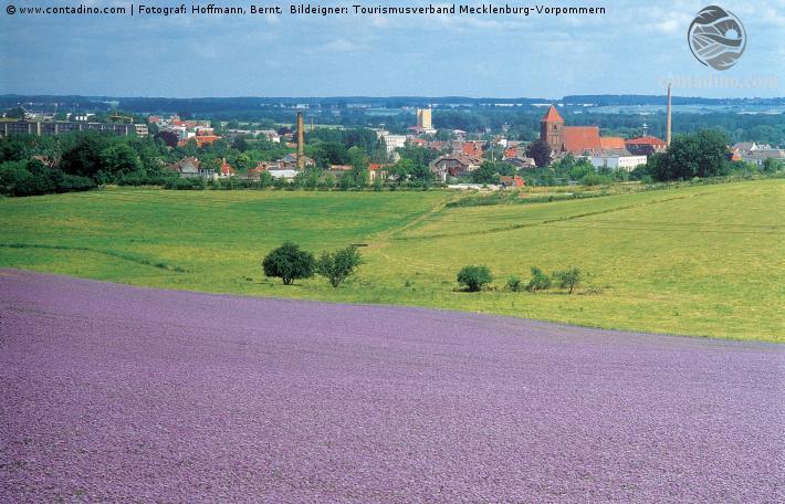 Mecklenburg_Schweiz.jpg