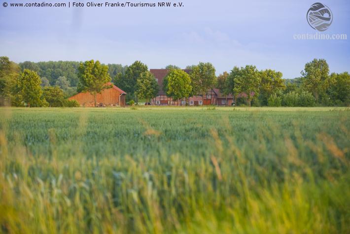 NRW_Landschaftsimpressionen aus dem Münsterland.jpg