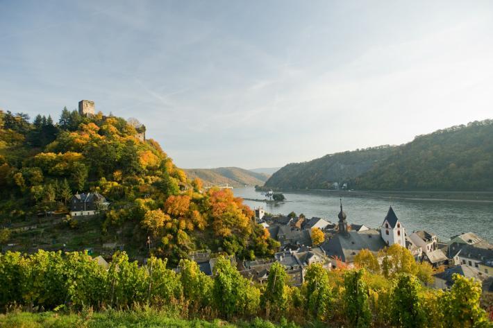 Rheinland_Blick über die Weinlandschaft auf Leinsweiler  .jpg