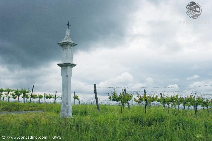 Impression Weinviertel