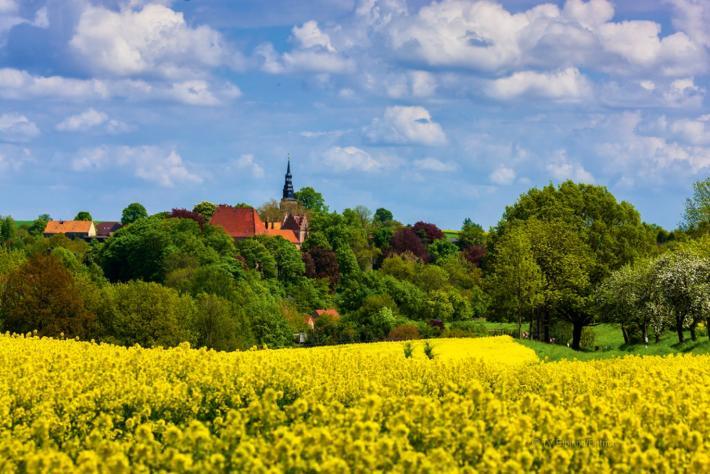 Sachsen_Blick auf Taubenheim.jpg