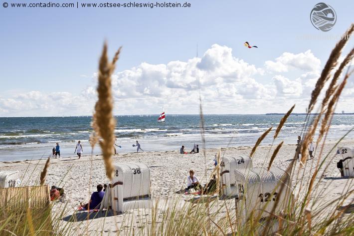 Schleswig_Ostsee_Haffkrug (1).jpg