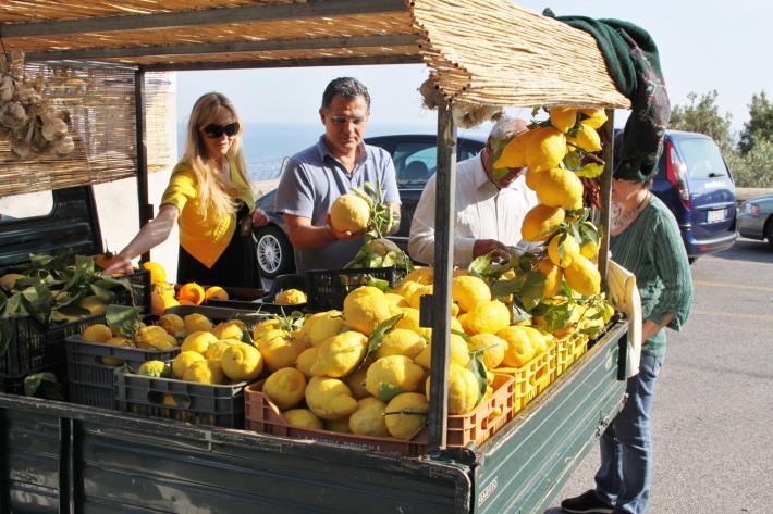 Zitronen Amalfi