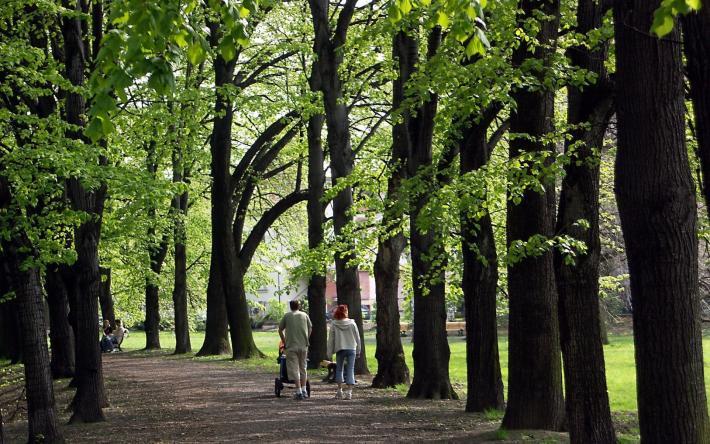 Ostrava Park