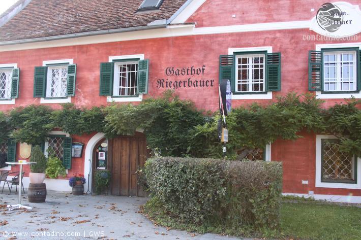 Riegerbauer