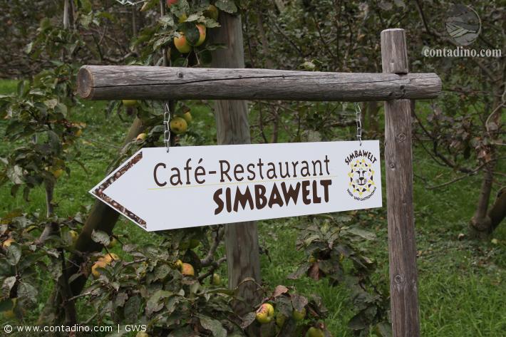 Simbawelt