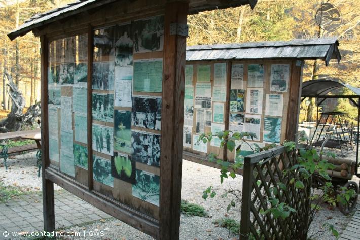 Geschichte Toplitzsee Schautafel