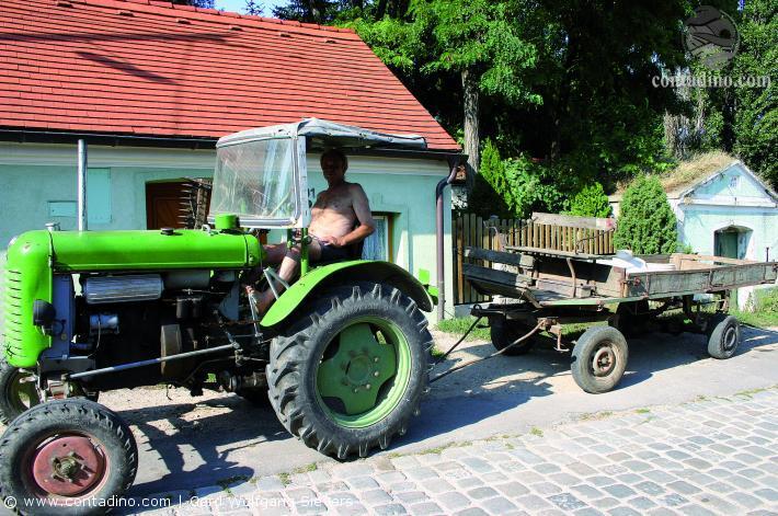 Wiener Landwirtschaft
