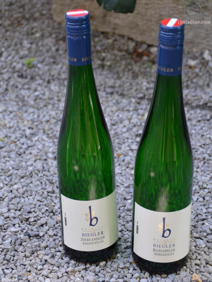 Weingut Biegler 4