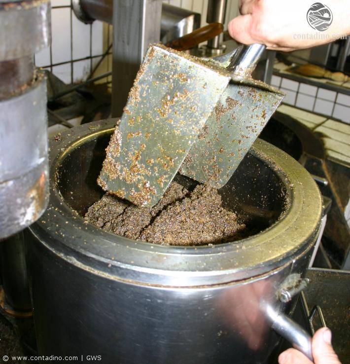 Kürbiskernöl_Produktion.jpg