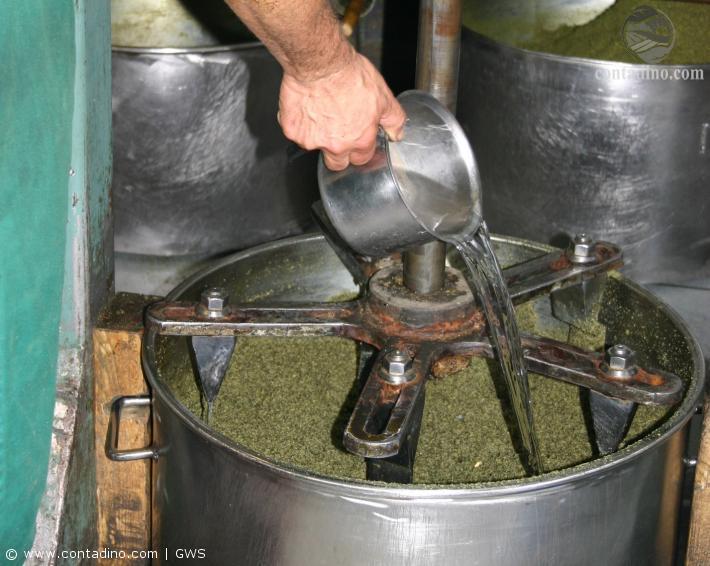 Kürbiskernöl_Produktion4.jpg