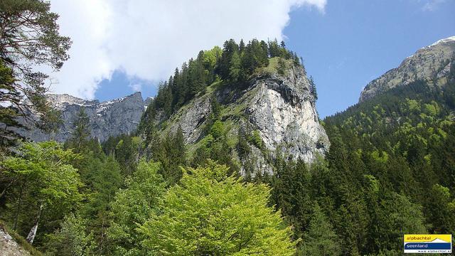 Alpbachtal (3).jpg