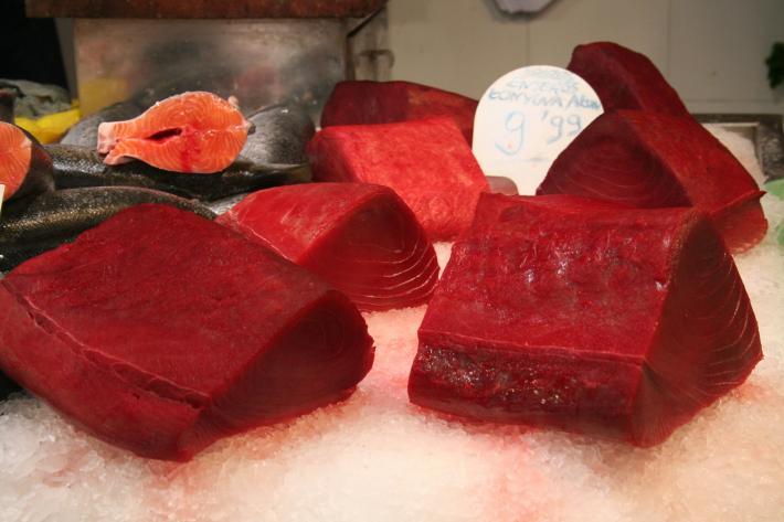 Barcelona Thunfisch