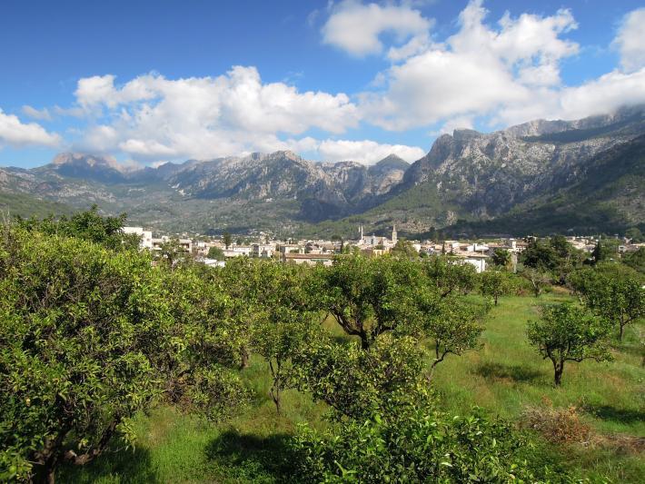 Mallorca_Blick nach Soller.jpg