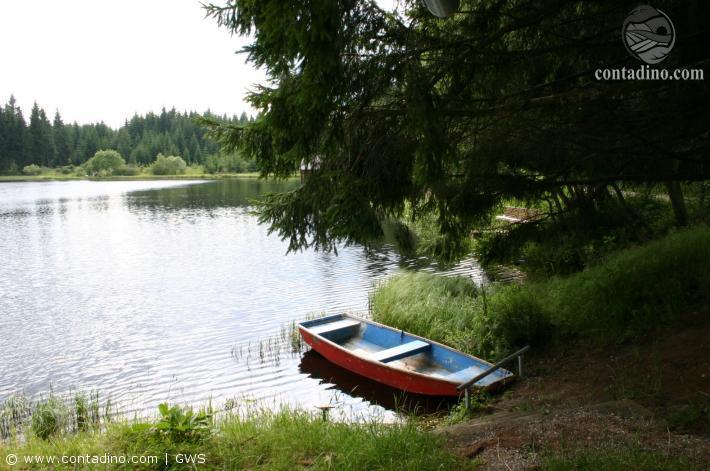Waldviertel_IMG_4554.jpg