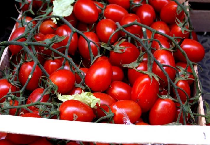 Neapel_San Marzano Tomaten.JPG