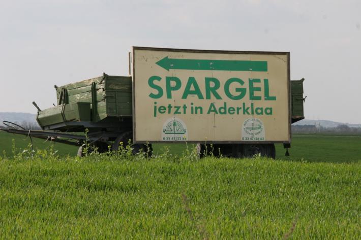 Marchfeld_Ortseinfahrt Aderklaa.JPG