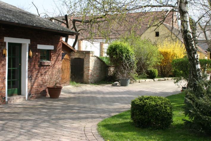 Marchfeld_Biohof Mühl.JPG