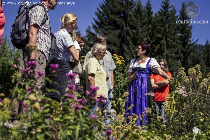 Kleinwalsertal_Kleinwalsertal Alpenkraeutergarten Oliver Farys 14.jpg