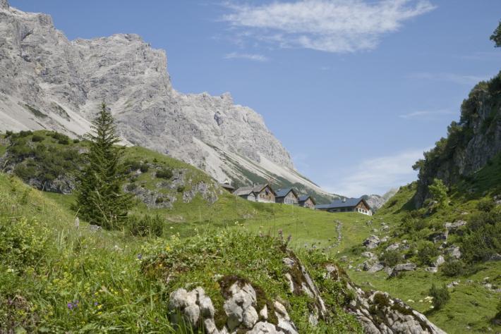 Walsertal_alpe_klesenza_copyright verein gwt tourismus_biosphaerenpark_grosses_walsertal.jpg