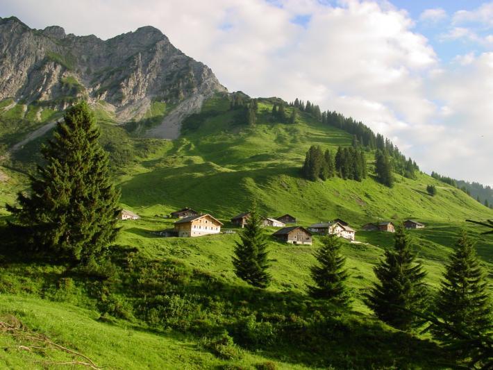 Walsertal_alpe steris_copyright biosphaerenpark grosses walsertal.jpg