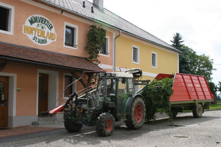 OÖ_Mühlviertler Hopfenland.jpg
