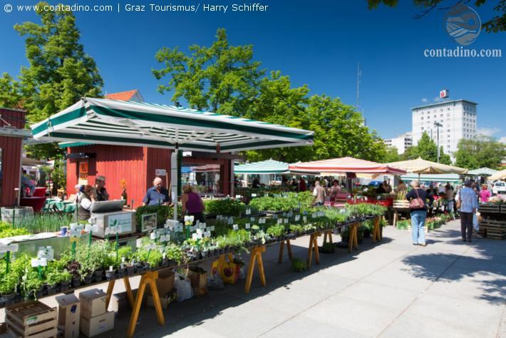 Graz Bauernmarkt
