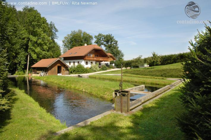 Mattigtal Blick auf eine Teichanlage