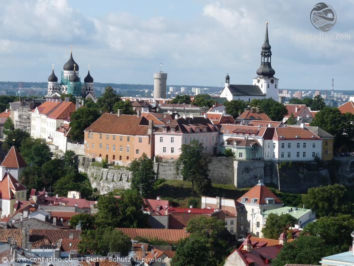 Estland (4).jpg