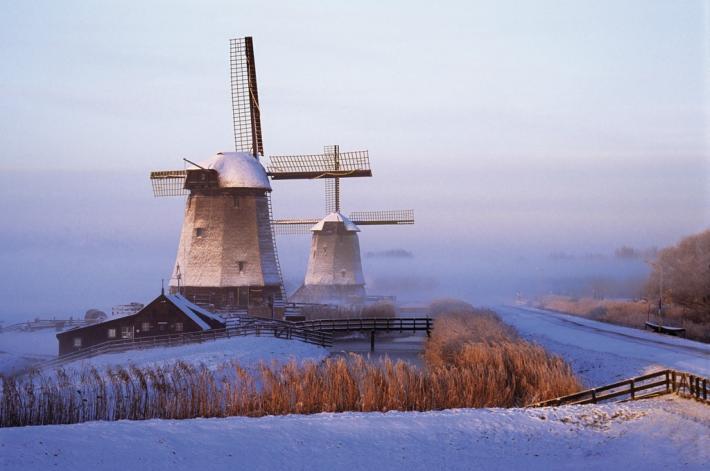 Niederlande_Lisse, Keukenhof - normal_jpg_5902 (2).jpg