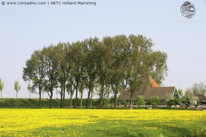 Niederlande_Beemster Polder - normal_jpg_3217 (1).jpg