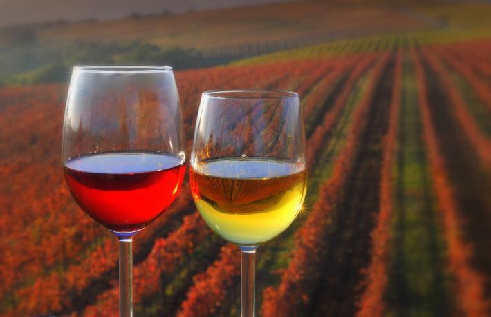 Slowenien_Wine.jpg