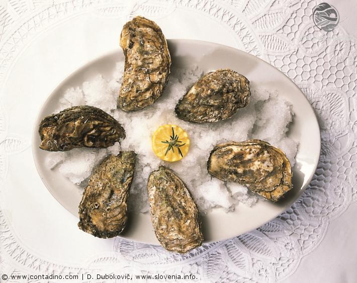 Slowenien_Oysters.jpg
