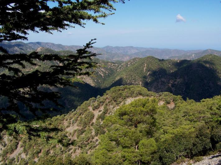 Zypern (5).jpg