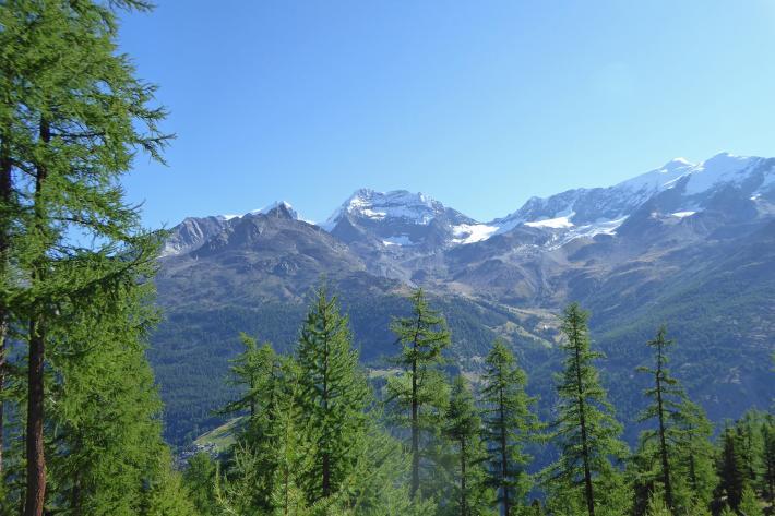 Schweiz_Fletschhorn, Lagginhorn, Weissmies.jpg