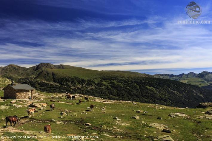 Andorra_Cabana Sorda Hut.jpg