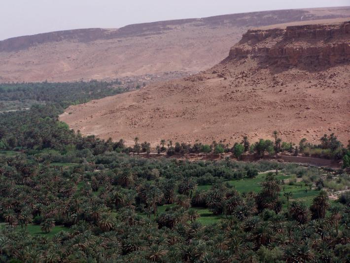 marokko neu1 (2).jpg