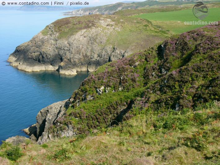 Wales (11).jpg